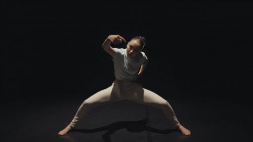 Balletto di Roma - (Dis)solution/screendance performance